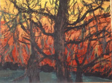 Trees at Sunset I